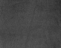 μαύρο διάνυσμα δέρματος α&nu Στοκ Εικόνες