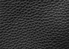 μαύρο διάνυσμα δέρματος α&nu Στοκ Φωτογραφία