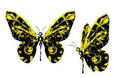 Μαύρο κίτρινο χρώμα που γίνεται το σύνολο πεταλούδων Στοκ Εικόνες