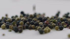 Μαύρο καρύκευμα πιπεριών Ξηρό μαύρο πιπέρι απόθεμα βίντεο