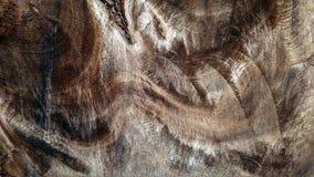 Μαύρο καφετί ξύλινο υπόβαθρο σύστασης στοκ φωτογραφίες