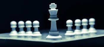 μαύρο κομμάτι βασιλιάδων πεδίων βάθους σκακιού ρηχό Στοκ φωτογραφίες με δικαίωμα ελεύθερης χρήσης