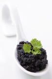 μαύρο κουτάλι χαβιαριών στοκ φωτογραφία