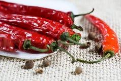 μαύρο κόκκινο πιπεριών πιπεριών τσίλι καυτό Στοκ εικόνα με δικαίωμα ελεύθερης χρήσης