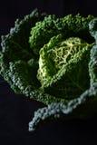 μαύρο λάχανο Στοκ Φωτογραφία