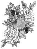 Μαύρο λεπτομερές μελάνι πουλί δερματοστιξιών στη Floral σύνθεση ελεύθερη απεικόνιση δικαιώματος