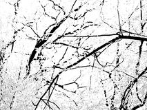 μαύρο λευκό ανασκόπησης Στοκ Εικόνα