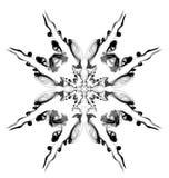 μαύρο λευκό αστεριών καπνού ανασκόπησης Στοκ φωτογραφίες με δικαίωμα ελεύθερης χρήσης