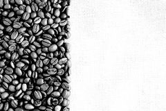 μαύρο λευκό εικόνας καφέ Στοκ Φωτογραφίες