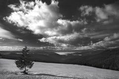 μαύρο λευκό τοπίων Στοκ εικόνα με δικαίωμα ελεύθερης χρήσης