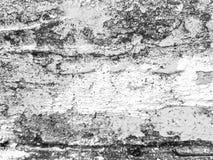μαύρο λευκό grunge ανασκόπηση&sigmaf μεγάλη σύσταση Χρήσιμος ως σκηνικό στοκ εικόνα με δικαίωμα ελεύθερης χρήσης