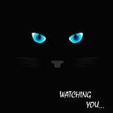 Μαύρο μάτι γατών Στοκ εικόνα με δικαίωμα ελεύθερης χρήσης