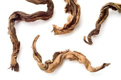 μαύρο ξηρό τσάι φύλλων στοκ φωτογραφία με δικαίωμα ελεύθερης χρήσης