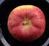 μαύρο πιάτο μήλων Στοκ εικόνες με δικαίωμα ελεύθερης χρήσης