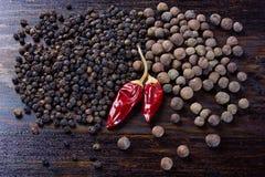 Μαύρο πιπέρι, αρωματικό ευώδες τσίλι Στοκ Εικόνες