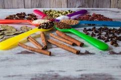 Μαύρο πιπέρι, καρδάμωμο, κορίανδρο, σπόροι μουστάρδας, φύλλο κόλπων, κανέλα, γλυκάνισο, μούρα goji Στοκ φωτογραφίες με δικαίωμα ελεύθερης χρήσης