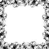 Μαύρο πλαίσιο διακοσμήσεων λουλουδιών και φύλλων anemone watercolor σχεδίων χεριών Στοκ Εικόνες