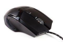 Μαύρο ποντίκι υπολογιστών που απομονώνεται στο άσπρο υπόβαθρο Στοκ Εικόνα