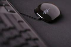 μαύρο ποντίκι Στοκ Φωτογραφίες