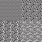 μαύρο πρότυπο Στοκ Εικόνες
