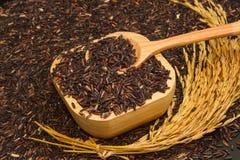 Μαύρο ρύζι στο ξύλινο ρύζι κύπελλων και ορυζώνα Στοκ Εικόνα