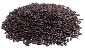 μαύρο ρύζι Σωρός των σιταριών, απομονωμένο άσπρο υπόβαθρο Στοκ φωτογραφία με δικαίωμα ελεύθερης χρήσης