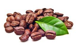 Μαύρο σιτάρι φασολιών καφέ με το φύλλο στοκ φωτογραφία