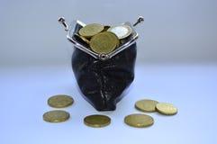 Μαύρο σύνολο πορτοφολιών των νομισμάτων Στοκ Εικόνα