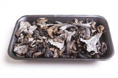 Μαύρο σύνολο δίσκων πολυαιθυλένιου του κέρατου των μανιταριών αφθονίας Στοκ Φωτογραφία