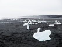 Μαύρο σύνολο παραλιών των παγόβουνων Στοκ φωτογραφία με δικαίωμα ελεύθερης χρήσης