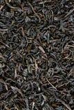 μαύρο τσάι ανασκόπησης Στοκ Εικόνες