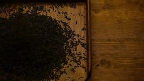 Μαύρο τσάι κανένα hd μήκος σε πόδηα απόθεμα βίντεο