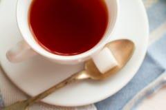 μαύρο τσάι φλυτζανιών Στην άσπρη ανασκόπηση Στοκ φωτογραφία με δικαίωμα ελεύθερης χρήσης