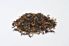 μαύρο τσάι Στοκ Εικόνα