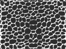μαύρο υπόβαθρο κακογραφιών Στοκ Φωτογραφίες