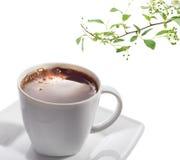 μαύρο φλυτζάνι καφέ Στοκ εικόνα με δικαίωμα ελεύθερης χρήσης
