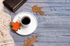 Μαύρο φύλλο σφενδάμου καφέ, knitwear και μελοψωμάτων Στοκ Φωτογραφία