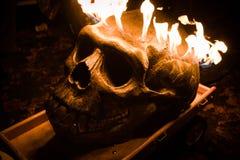 μαύρο φλεμένος απομονωμένο κρανίο Στοκ Εικόνα