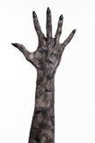 Μαύρο χέρι του θανάτου, το περπάτημα απολύτως, zombie θέμα, θέμα αποκριών, zombie χέρια, άσπρο υπόβαθρο, χέρια μουμιών Στοκ εικόνα με δικαίωμα ελεύθερης χρήσης
