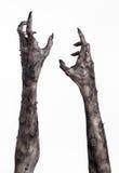 Μαύρο χέρι του θανάτου, το περπάτημα απολύτως, zombie θέμα, θέμα αποκριών, zombie χέρια, άσπρο υπόβαθρο, χέρια μουμιών Στοκ φωτογραφίες με δικαίωμα ελεύθερης χρήσης