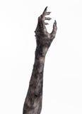 Μαύρο χέρι του θανάτου, το περπάτημα απολύτως, zombie θέμα, θέμα αποκριών, zombie χέρια, άσπρο υπόβαθρο, χέρια μουμιών Στοκ εικόνες με δικαίωμα ελεύθερης χρήσης