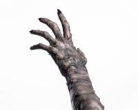 Μαύρο χέρι του θανάτου, το περπάτημα απολύτως, zombie θέμα, θέμα αποκριών, zombie χέρια, άσπρο υπόβαθρο, χέρια μουμιών Στοκ Φωτογραφία