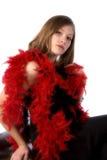 μαύρο boa επίσημο κόκκινο Στοκ εικόνες με δικαίωμα ελεύθερης χρήσης