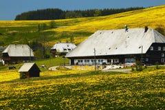 μαύρο farmhouse δασικό καλοκαίρι Στοκ Εικόνες