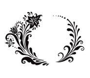 μαύρο floral λευκό πλαισίων Στοκ Εικόνες