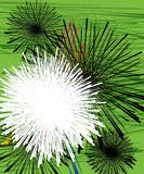μαύρο floral λευκό Στοκ εικόνες με δικαίωμα ελεύθερης χρήσης