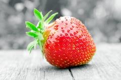 μαύρο juicy λευκό φραουλών Στοκ φωτογραφία με δικαίωμα ελεύθερης χρήσης