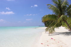 Μαλδίβες Στοκ Εικόνες