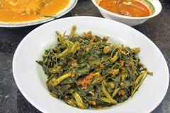 Μαλαισιανό Sambal τσίλι Kangkong Στοκ Φωτογραφίες