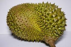 Μαλαισιανό Durian Στοκ Εικόνα